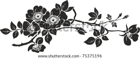 Vector graphic of Rose with leaves. Isolated on White background. Vector illustration - stock vector