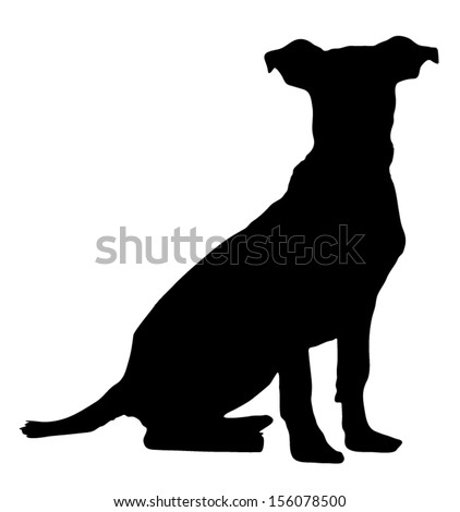 Vector graphic outline of a pitbull weimaraner puppy. - stock vector