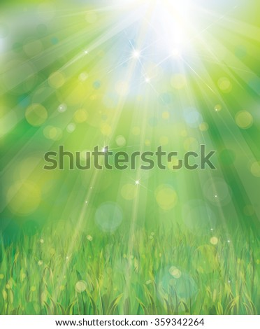 Vector green background with rays, lights and grass border. - stock vector