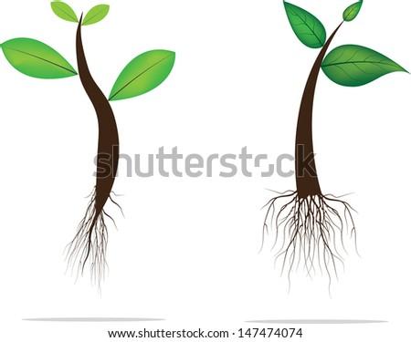 Vector green plant. - stock vector
