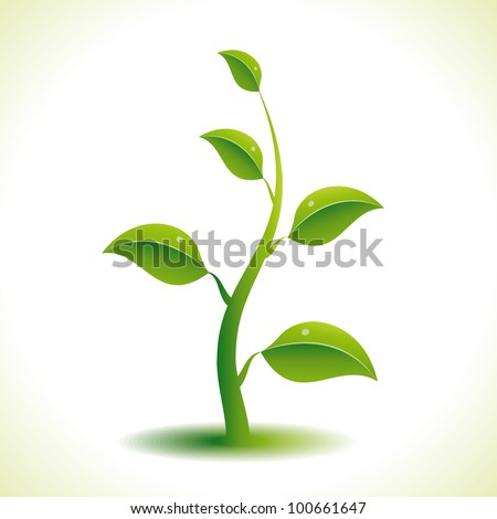 Vector green plant. Eps8.