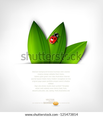 vector grey background with leafs and ladybird - stock vector