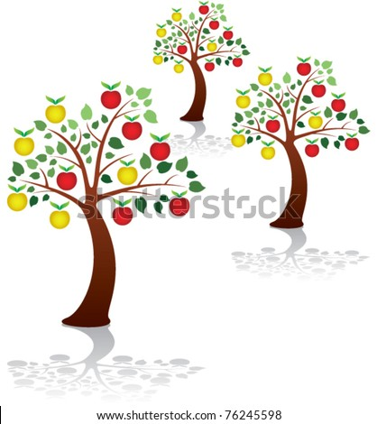 vector group of apple trees in a park or orchard