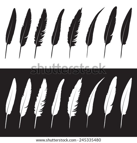 Vector group of feather on white background and black background - stock vector