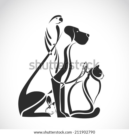 Vector group of pets - Dog, cat, bird, reptile, rabbit, isolated on white background - stock vector