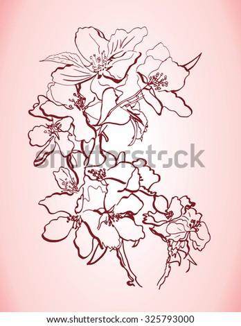 vector hand drawn apple tree branch - stock vector