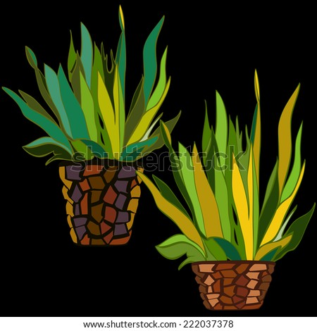 Vector hand drawn buches in the clay flower-pots - stock vector