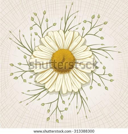 Vector hand drawn daisy. Global color CMYK.  - stock vector