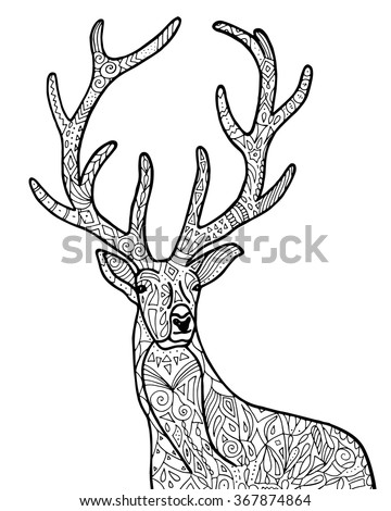 deer adult coloring pages - adult coloring pages deer head coloring pages