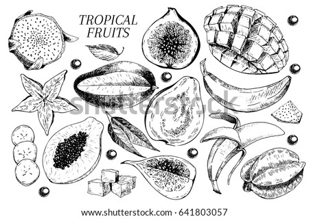 Vector hand drawn exotic fruits. Engraved smoothie bowl ingredients. Tropical sweet food. Carambola, guava, papaya, fig, mango, banana, acai, pitaya, lychee Use for exotic restaurant food party