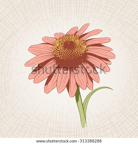 Vector hand drawn flower. Global color CMYK.  - stock vector