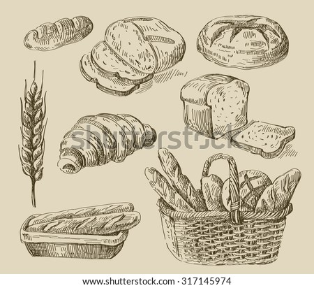 vector hand drawn food sketch and bread doodle