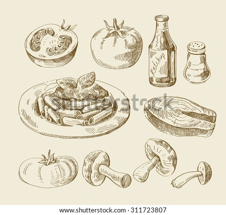 vector hand drawn food sketch and kitchen doodle