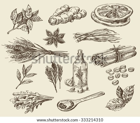 vector hand drawn food sketch and kitchen doodle - stock vector