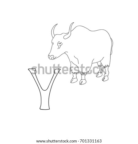 Vector Hand Drawn Illustration Capital Letter Y On Alphabet Card Black And White Realistic Yak