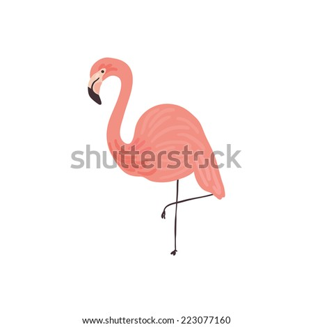 Vector hand drawn illustration of a Flamingo - stock vector