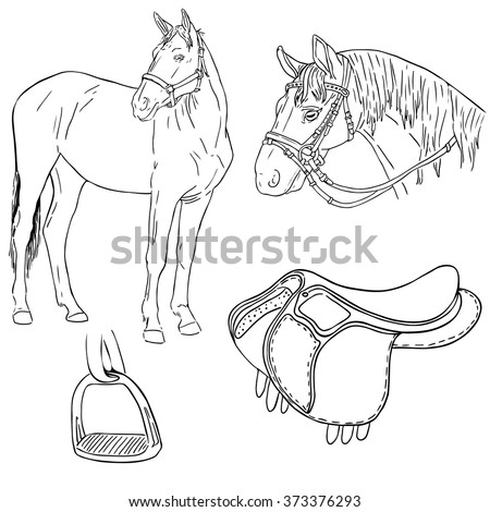 Vector hand drawn illustration horse horses stock vector 373376293 vector hand drawn illustration of a horse horses head saddle and the stirrup ccuart Images