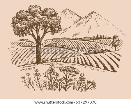 vector hand drawn mountain landscape sketch and nature