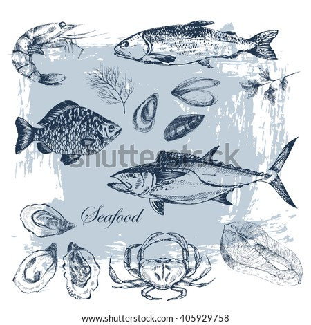 vector hand drawn seafood set - shrimp, crab, lobster, salmon, oyster, mussel, tuna, trout, carp. Mediterranean cuisine seafood sketch