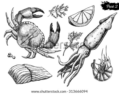 Vector hand drawn seafood set. Vintage illustration - stock vector