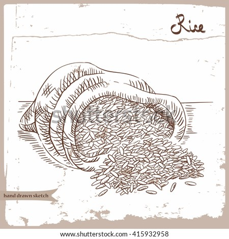 Vector hand drawn sketch of the rice groats in the sack on the textured paper background. Hand drawn linear illustration of the rice groats with text. Image for farm, shop, tag, agriculture industry.
