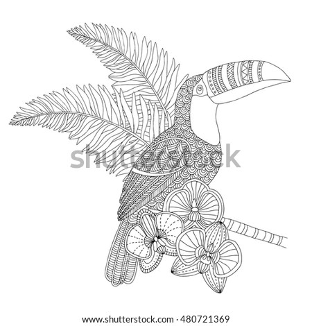 Tropical World Book Coloring Pages