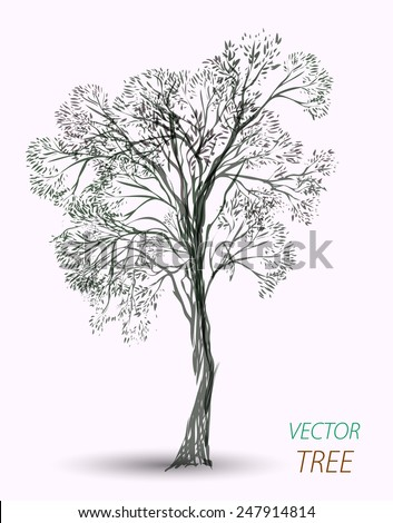 vector hand drawn tree isolated on white