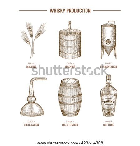Vector hand drawn whisky production elements. - stock vector