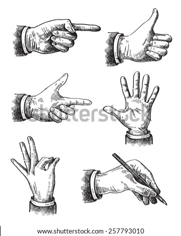 Vector hand frawn Illustration of hand on white - stock vector