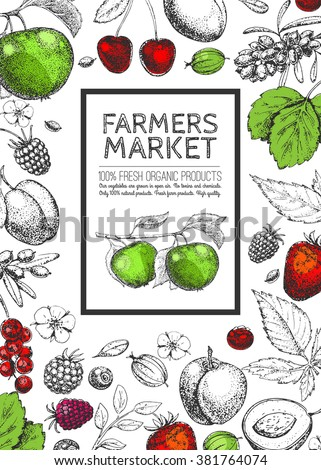 Vector Healthy Food template. Vintage farm logo, fruits and berries. Logotype. Hand drawn. Farmers market. Style of etching. Sketch. Vegetarian fresh farm product. Eco, raw, organic, bio, natural.
