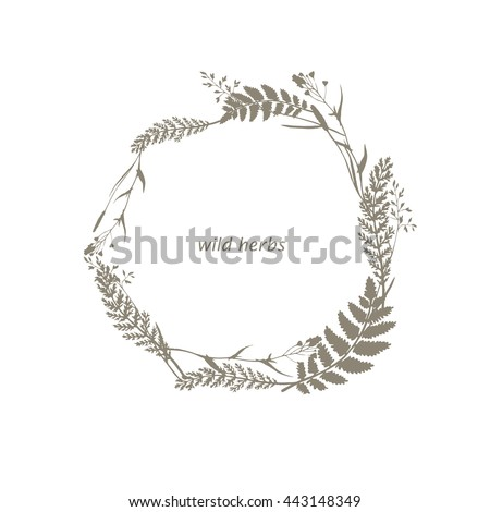 Vector Herbal Frame With Wild Herbs Flowers And Leaves In Gray Color Hand Drawn