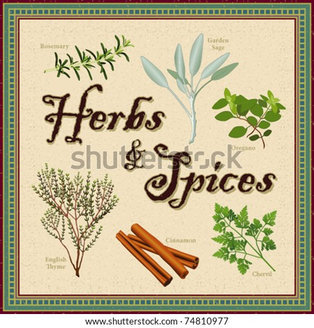 vector - Herbs & Spices. Rosemary, Garden Sage, French Chervil, Stick Cinnamon, English Thyme, and Italian Oregano in antique mosaic frame. EPS8 organized in groups for easy editing. - stock vector