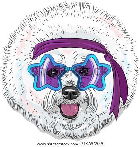 Vector hipster Star Disco dog Bichon breed  in fashionable glasses-stars with headband - stock vector