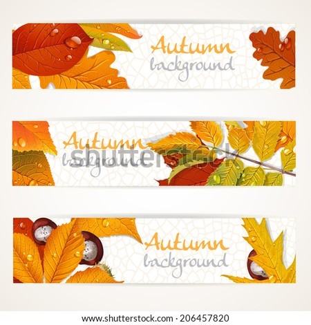 Vector horizontal autumn leaves banners - stock vector