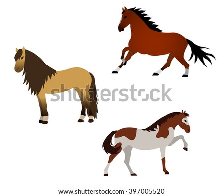 Vector horse illustration collection. Elements for design on white background.