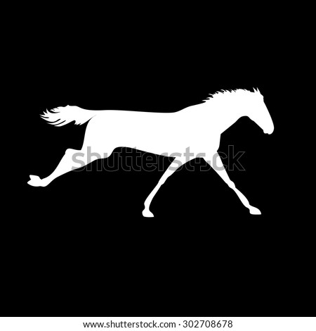 Vector horse images. Silhouette horse drawings. Racehorse posters. Racehorse silhouette on isolated background. Silhouette of a horse head. Derby vector icon