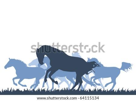 vector horse silhouettes - stock vector