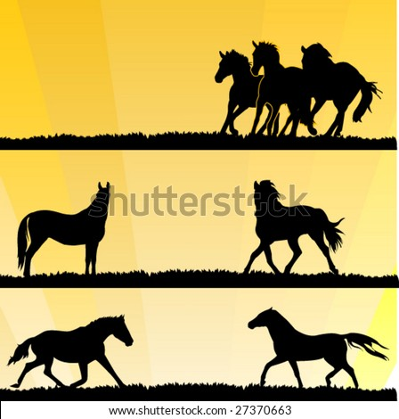 vector horses silhouettes on sunset background. easy to edit - stock vector