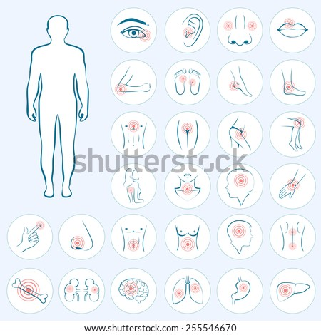 vector human anatomy, body pain, medical illustration  - stock vector