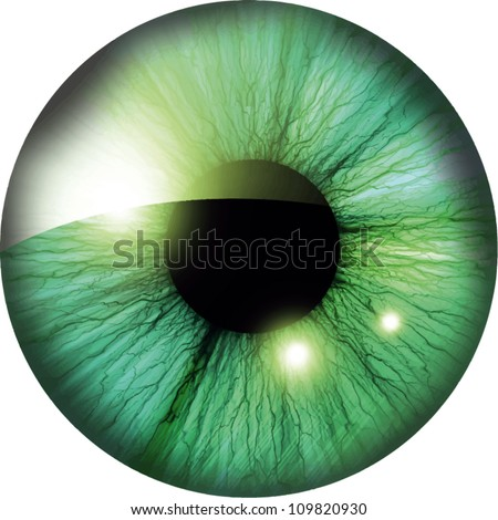 Vector human iris with some highlights and reflections - stock vector