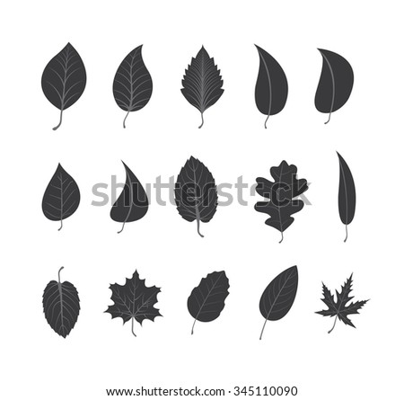 Vector Icons - Leaves - Illustration