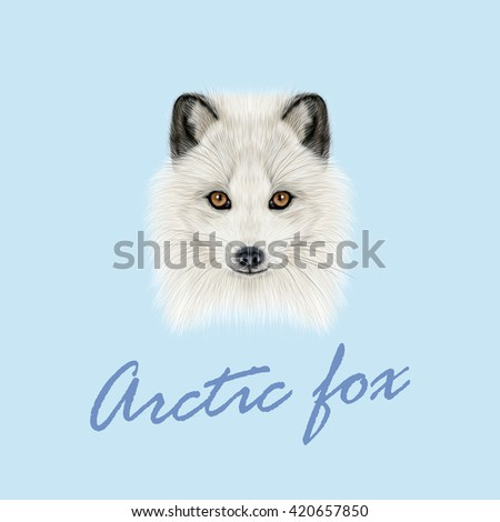 Vector Illustrated Portrait of Arctic fox. Cute white fluffy face of Polar Fox on blue background. - stock vector