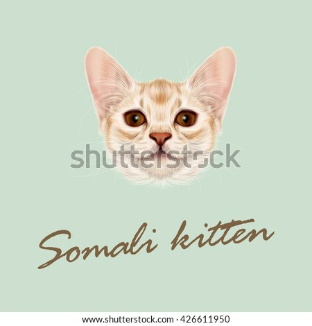 Vector Illustrated portrait of Somali kitten. Cute fluffy face of domestic cat on green background. - stock vector