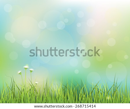 Vector illustration abstract green grass. Spring nature field with white flowers meadow and water drops on green leafs,Bokeh effect on pastel  blue green color background .Blank space for your design - stock vector