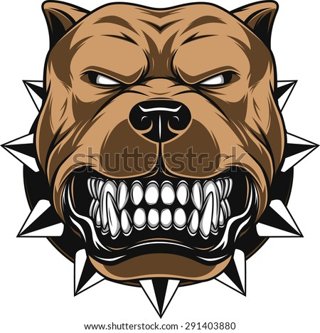 Vector illustration Angry pitbull mascot head, on a white background - stock vector