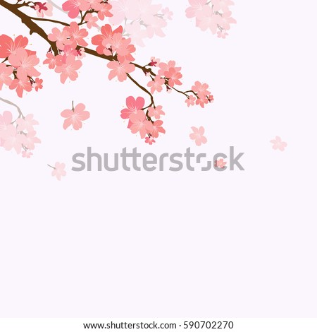 Vector illustration blooming branch cherry.  Floral background