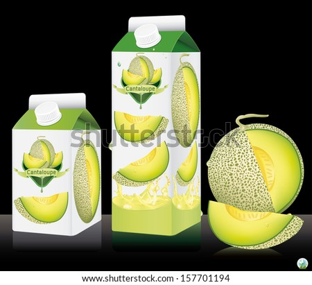 Vector illustration. Cantaloupe package. - stock vector