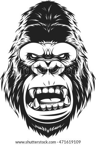 vector illustration ferocious gorilla head on stock vector