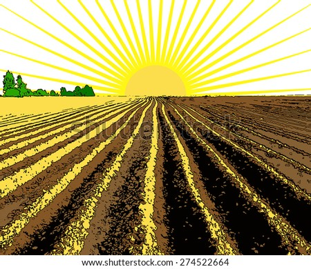 vector illustration flat strip of plowed land stretching to the horizon - stock vector