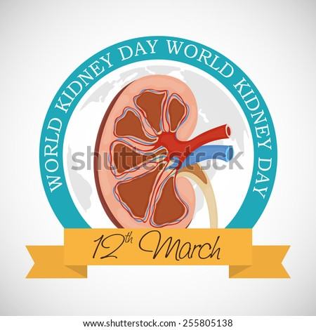 Vector illustration for World Kidney Day. - stock vector